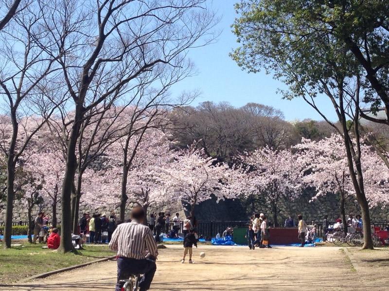 1大阪城公園 東外濠東側