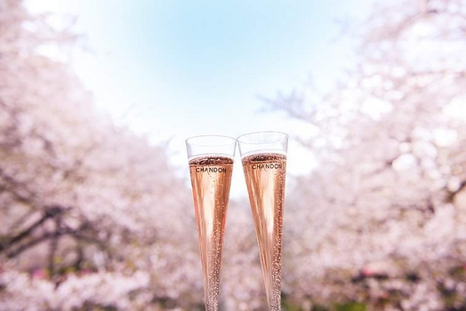 大阪お花見イベントのイメージ