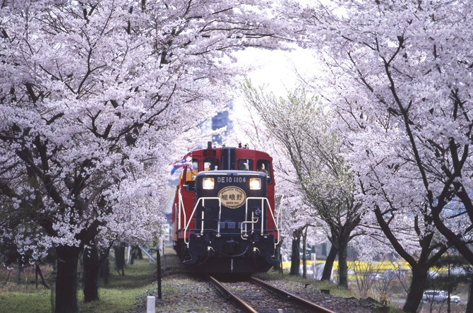 京都嵯峨野のトロッコ列車