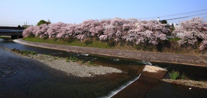 京都の塩小路橋